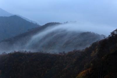 滝雲モドキ