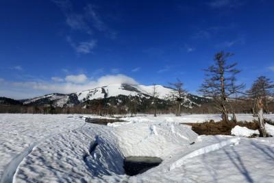 上田代から至仏山